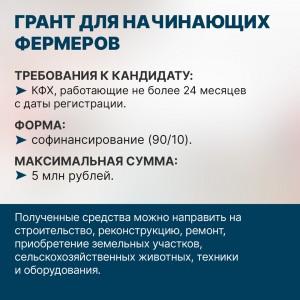 IMG-20200818-WA0003